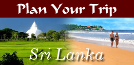 Plan Your Trip to Sri Lanka